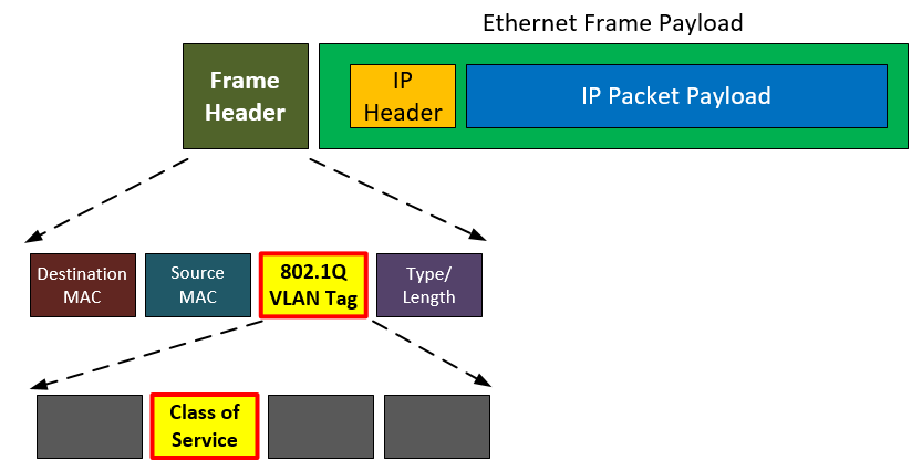 Components in a Layer 2 Frame Header