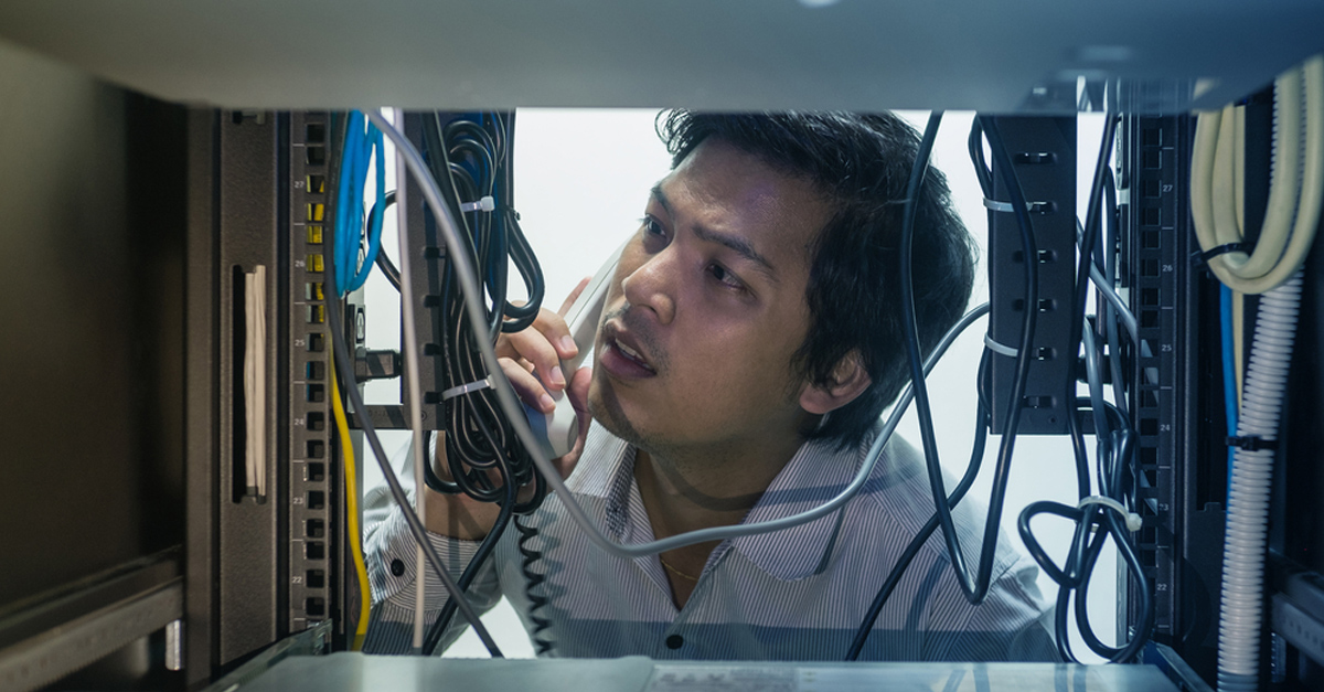 IT engineer examining network cables