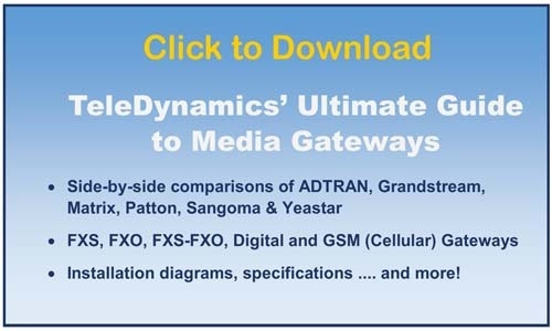 Download TeleDynamics' Guide to Media Gateways